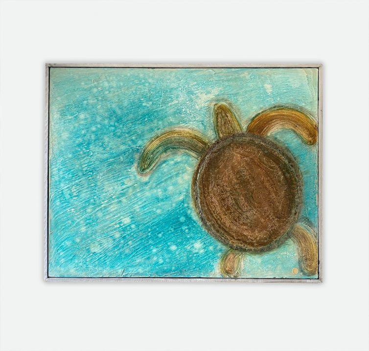 Turtle on Aqua