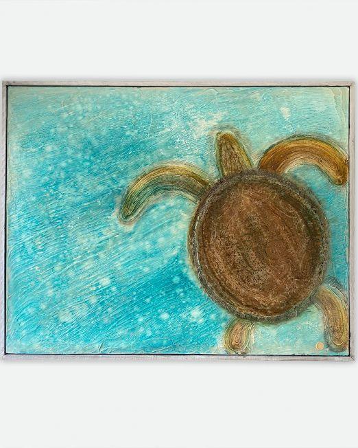 turtle-on-sand